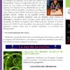 Entrevista SILVIA CARRANZA / La voz de la noche